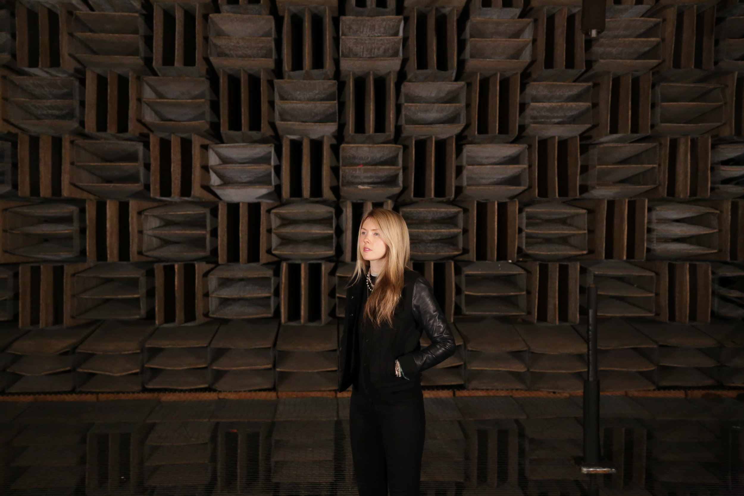 Beatie Wolfe - 2017 Raw Space - in the Bell Labs Anechoic Chamber by Theo Watson (4).JPG