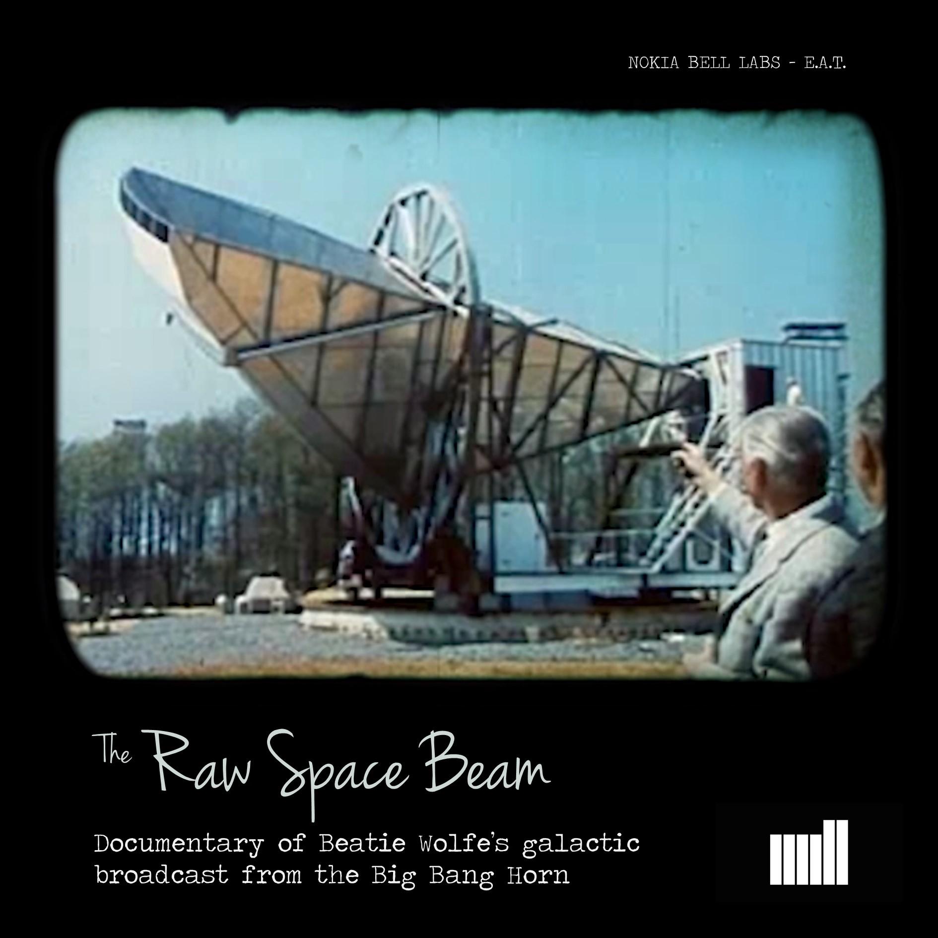 Beatie Wolfe Raw Space Beam - Documentary - The Mill.jpg