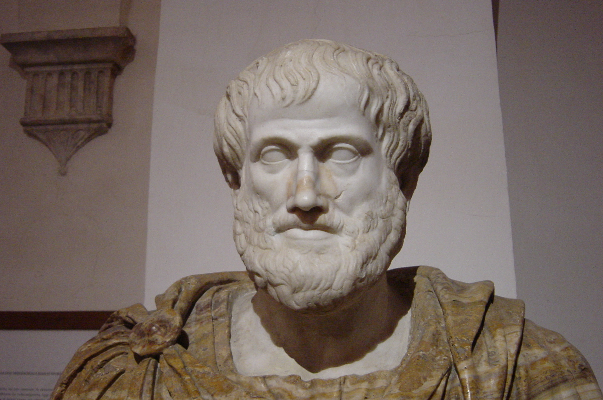 Bust of Aristotle. Marble, Roman copy after a Greek bronze original by Lysippos from 330 BC. National Museum of Rome. Photo: Giovanni Dall'Orto