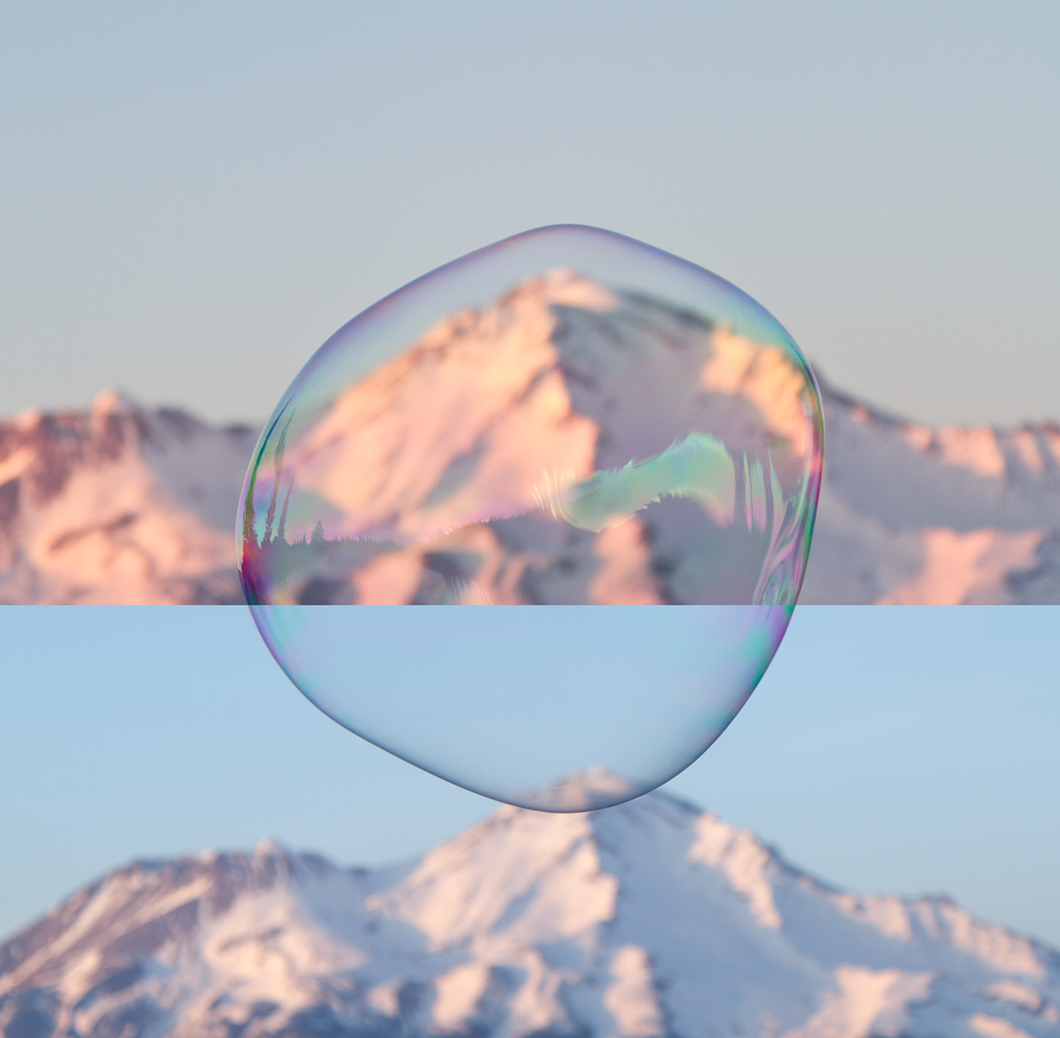 Shasta_Bubble_web.jpg