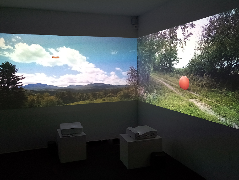 Installation View, 2019. dePayser, l'arttepes/Mikado, Annecy, France