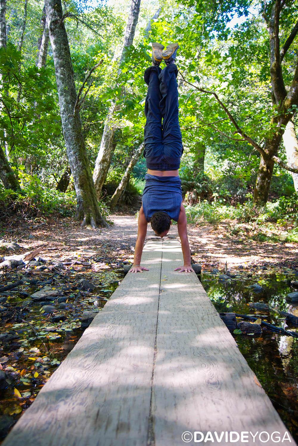 Handstand Bridge Muir Woods 2 - C.jpg