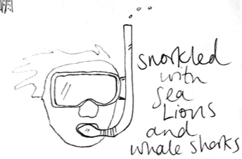scan snorkle.png