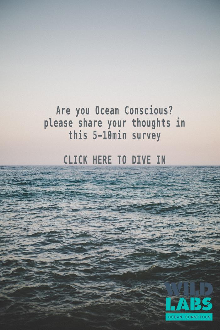 Are you Ocean Conscious (1).jpg