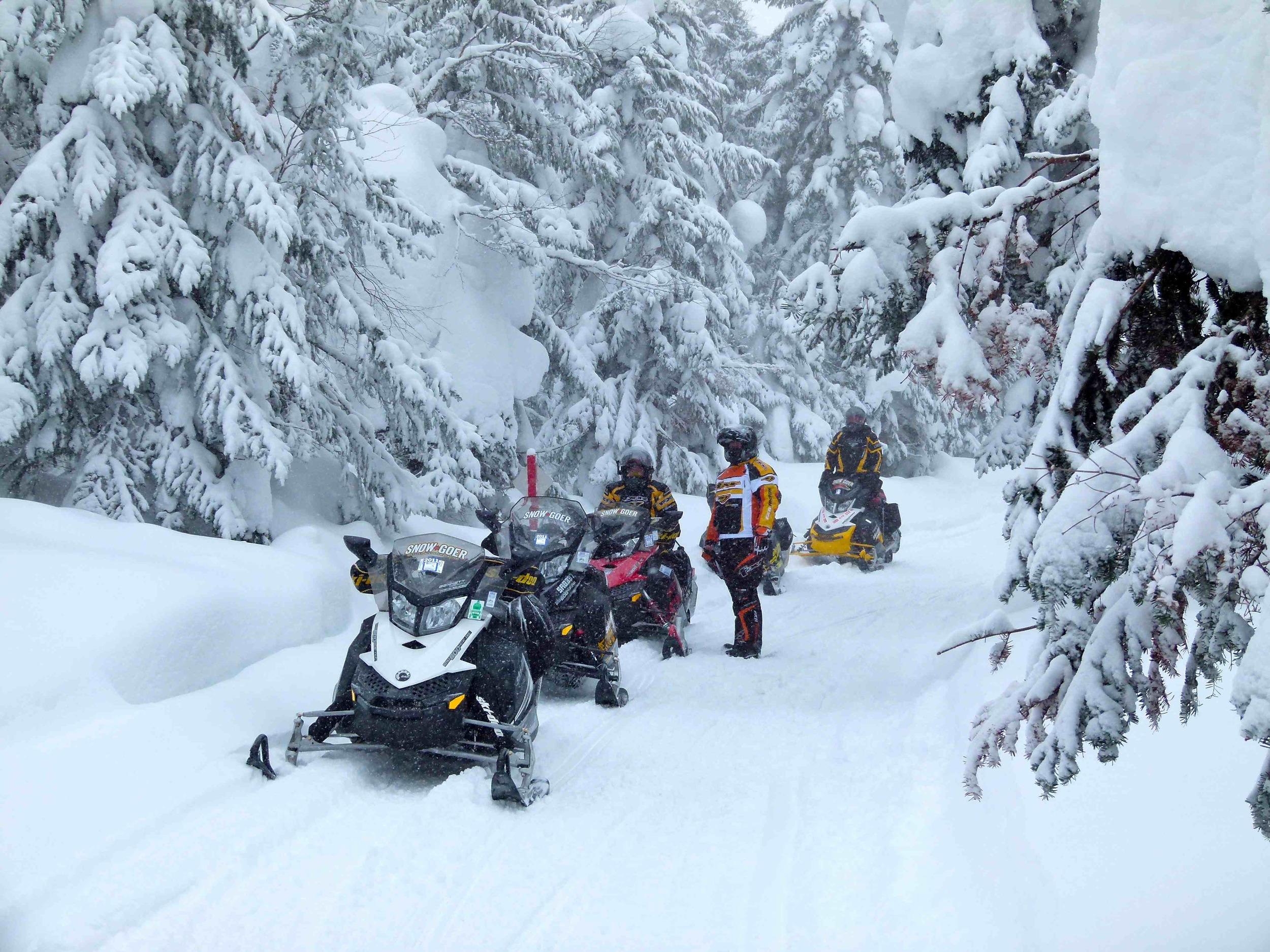 Snowmobile 2.jpg