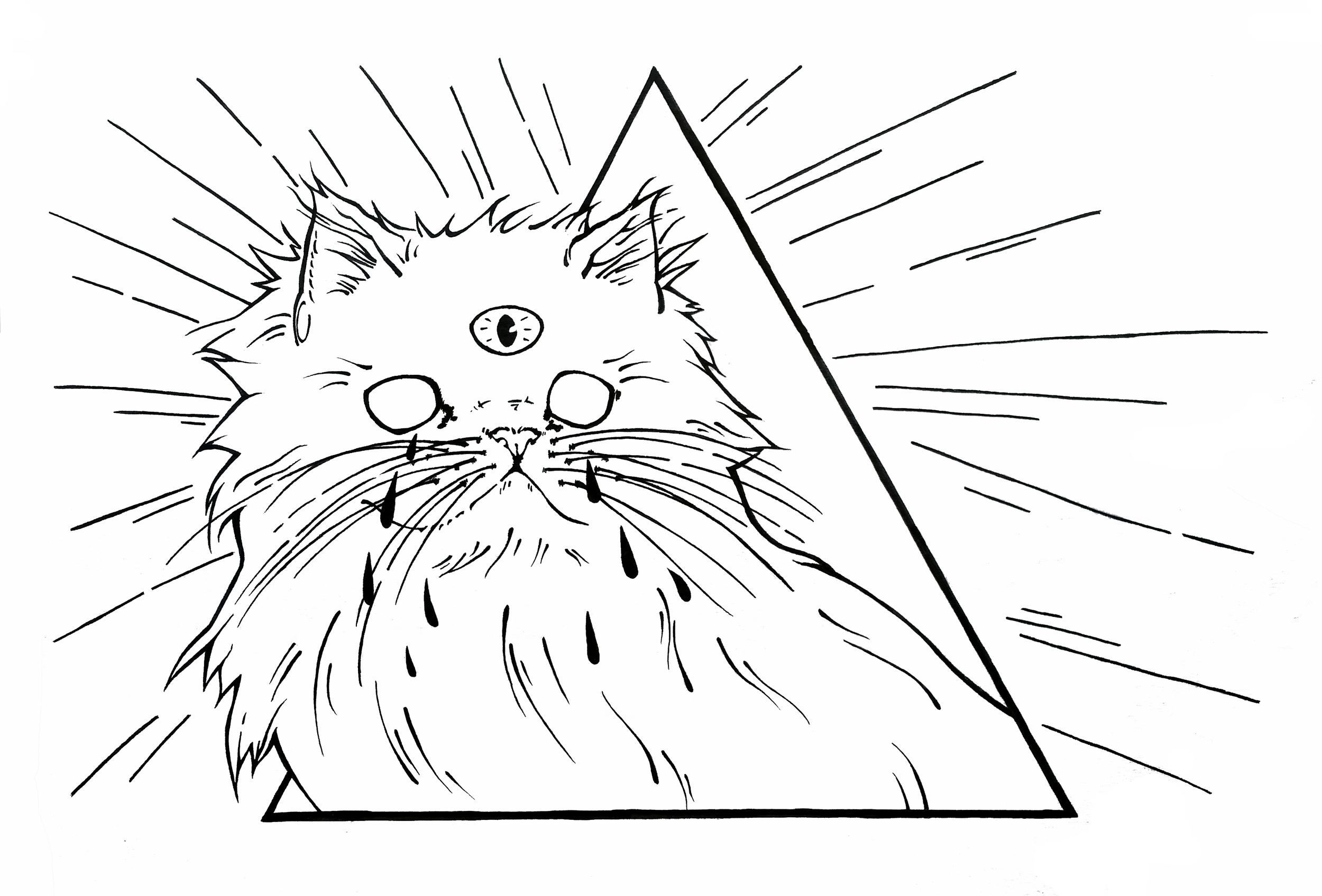 trianglecat666.jpg