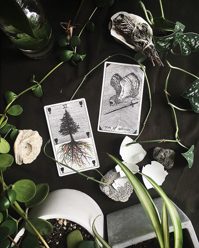 resident reader Erin Shipley (@etshipley) invites you to cut away the wounds that weigh you down as the sun joins our collective north node in Leo in this week's TAROTSCOPES 7/24 – 7/30 :: SON OF SWORDS & VI OF CUPS  We all have a responsibility to our healing. To sharpen our knives so we can slice open our fears and get clear with our keepsakes. We hold tight to wounds, wearing them around necks like warning whistles. Sometimes, that state of emergency no longer suits our style. This week, the Son of Swords takes a swing at our memories to help us see what is worth forgetting. Forgiving. Relishing. Receiving. Retrieving. Reliving.  As the Sun enters the sign of the transiting true node, the universe has a not-so-subtle way of pushing us onto our heart path. Eclipse season is designed to make us diligent, sending gifts of hurtful cues and helpful clues that send us on wild goose chases to the most divine destinations. Growing pains considered closely are delightful directions to detach or delay for one more dance.  This week begins with bangs as Mercury fires off firsts at Uranus and serves seconds to Chiron, kicking dust into the Centaur's kind eyes. Honor your feelings while the mad messenger takes a critical chill pill when he enters Virgo Tuesday evening. On Sunday, Uranus interrupts a wistful Venus as she dabs the wounds of the hit healer. Wherever you can serve yourself some space, clear your plate and sit still for surprise soup.  The Son of Swords is a wiz of a wordsmith – in training. His intellect is quick but self-important, a classic representation of Mercury at the last degrees of Leo and first few of Virgo. Harness his energy to help you say hello. Use his critical talents to sort out when to speak up and when to shut up. If you're in the thick of it, take a pause. When you're quiet nobody knows how stupid you are – or how smart you are. Eclipse season asks us to accept unexplained invitations. Make memories out of the miscellaneous messages you're receiving. The Six of Cups reminds us all is not wasted in this world. If somebody offers you a dream, now is a good moment to jump out of bed and dress to the nice and necessary nines.