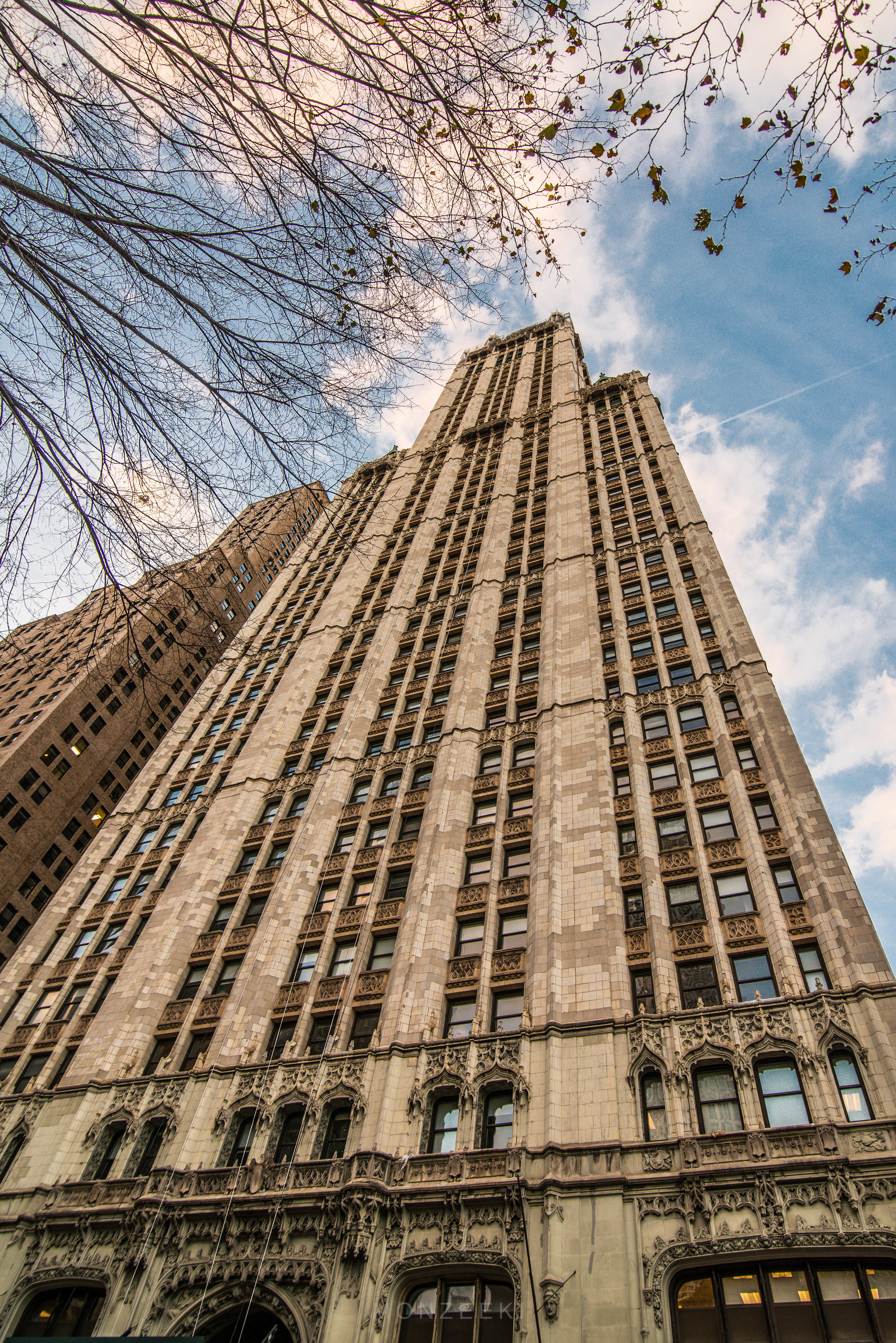 20151121-Woolworth-Bldg-1195.jpg
