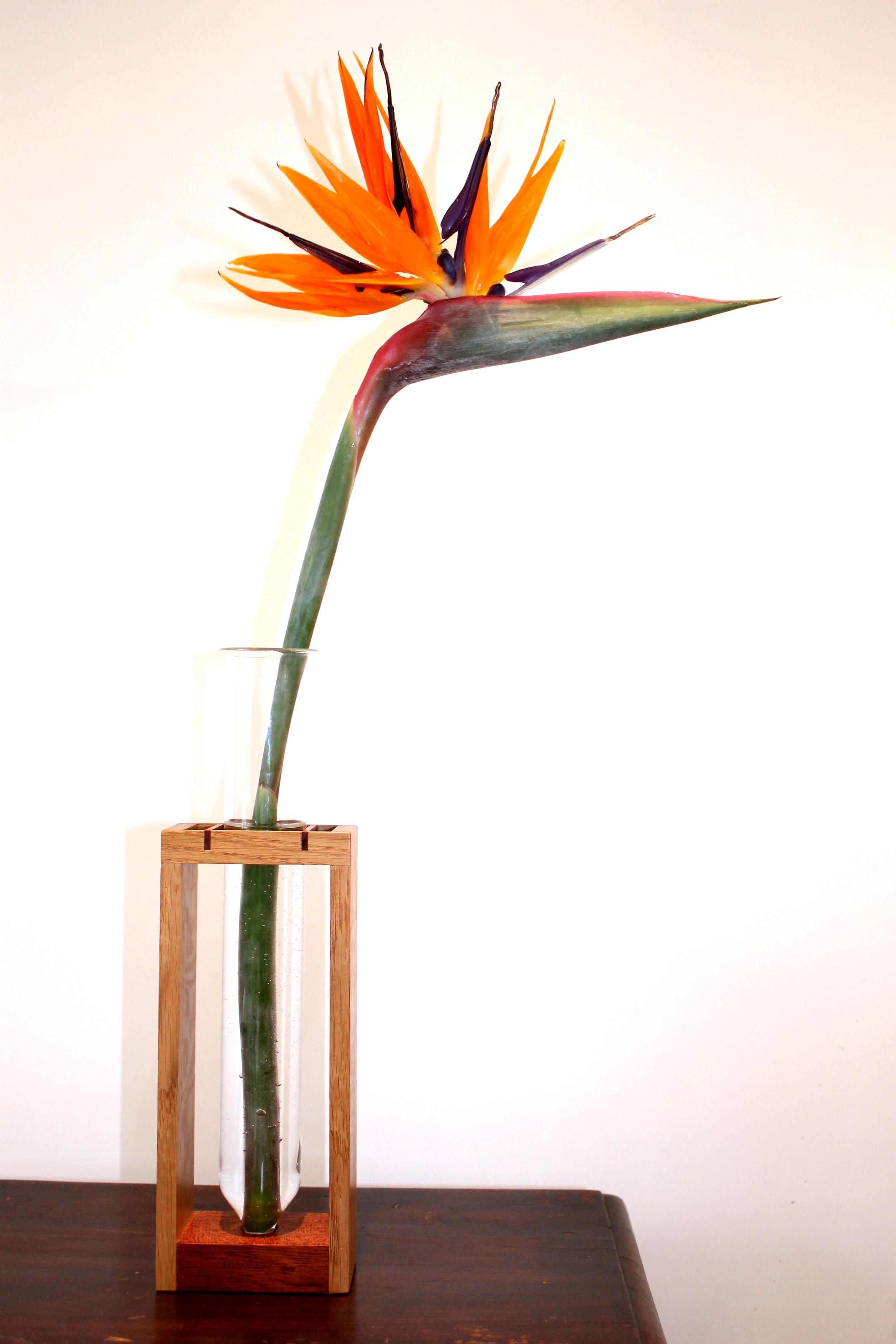 Vase Stand