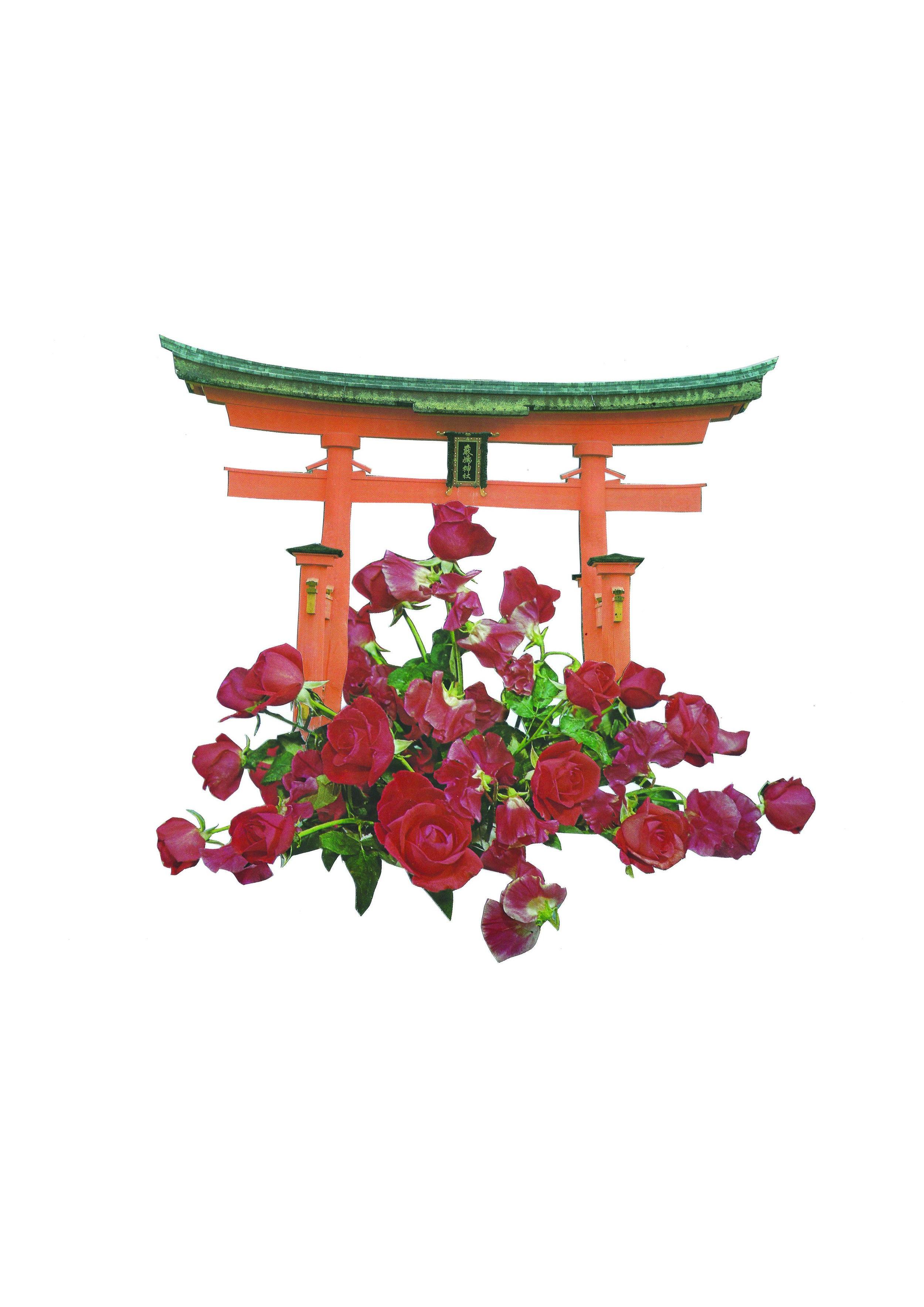japan_redroses.jpg