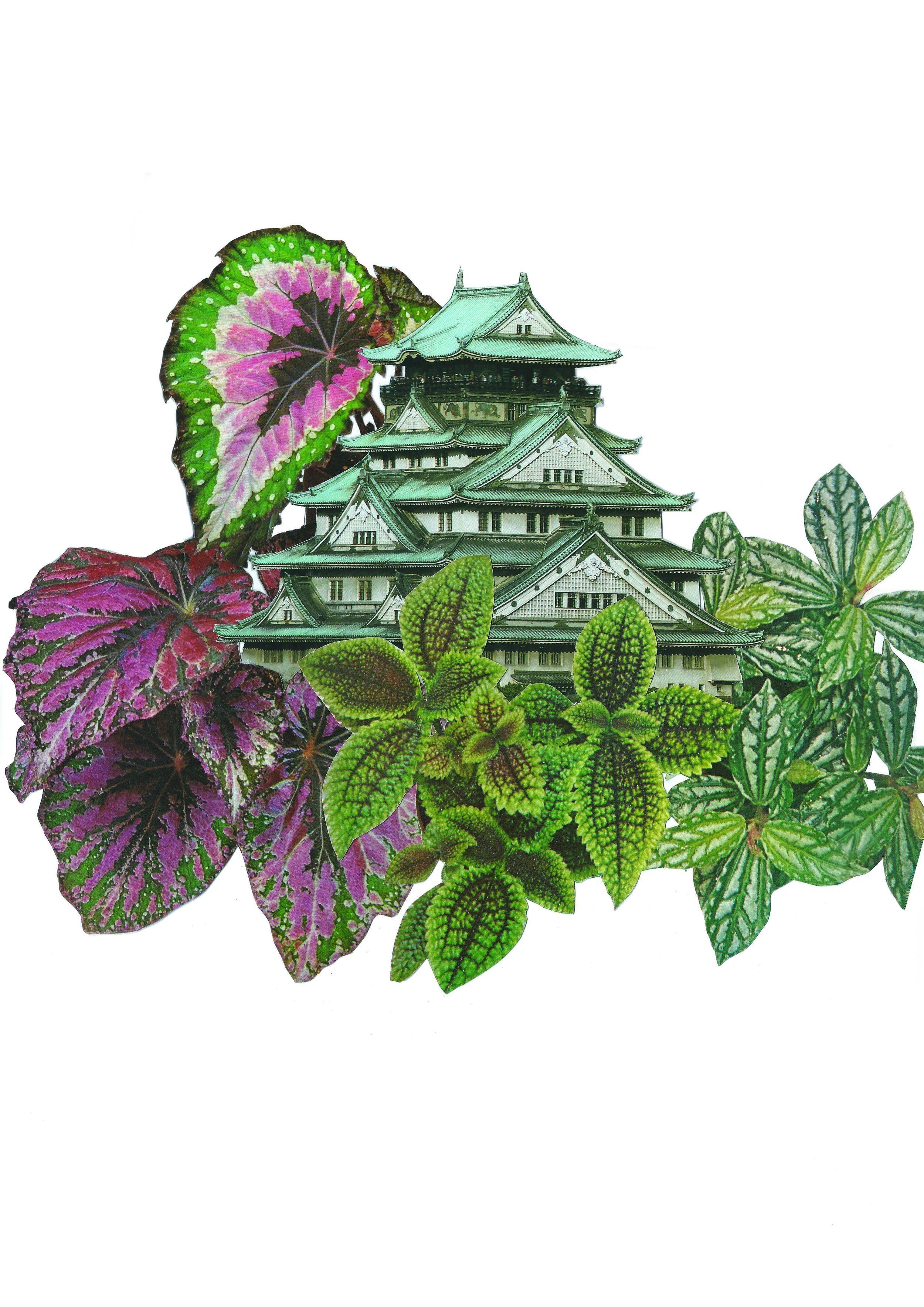 japan_Spring.jpg