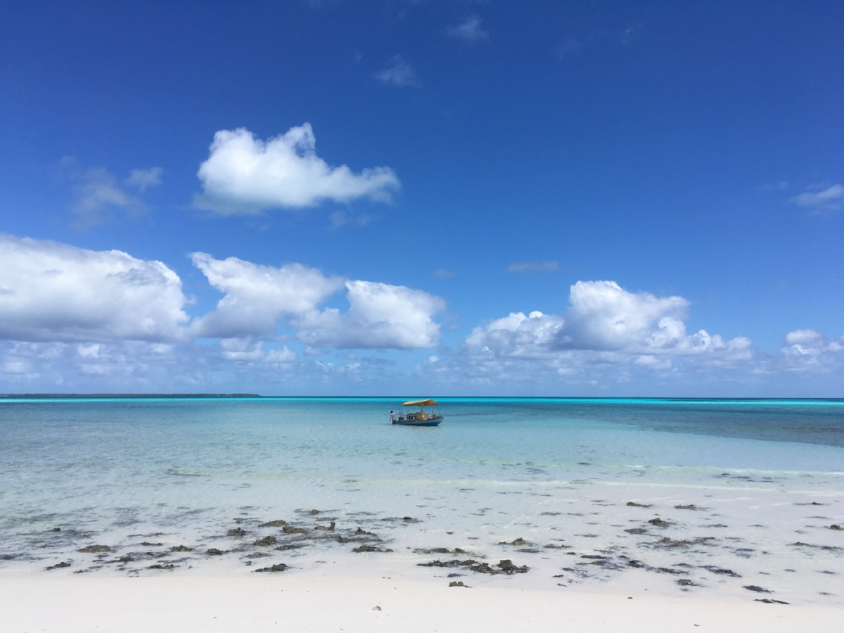 View of our transport from Prison Island. Photo: Sian Pritchard