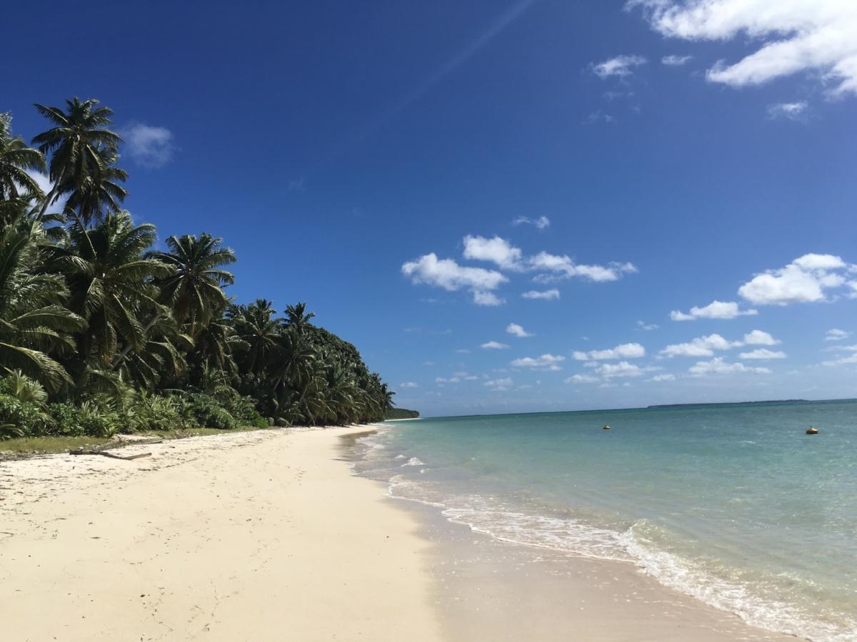 West Island. Photo: Sian Pritchard