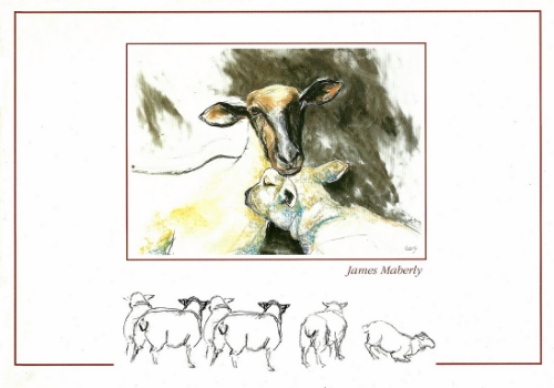 Brochure produced in 1999 covering the broad spectrum of my art at that time.