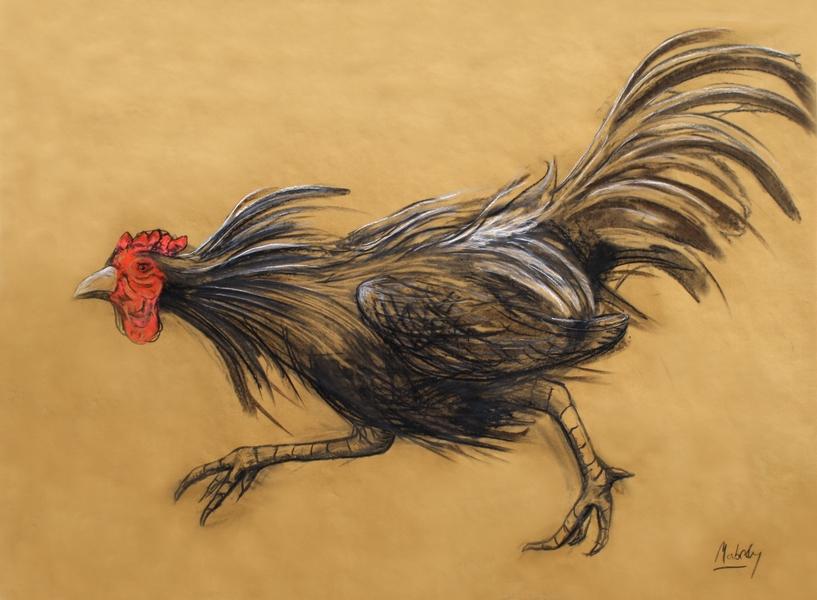 Running cockerel.10.15.new.l.sm.jpg