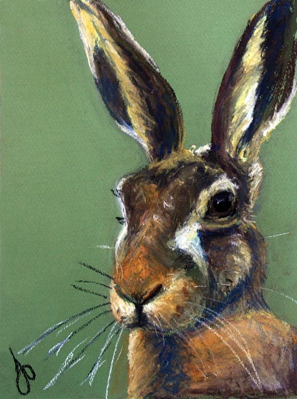 Jo's Hare.jpg
