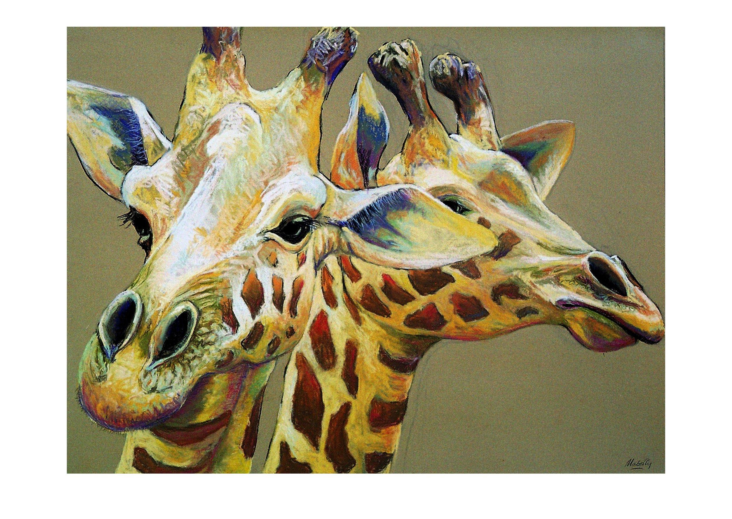 Giraffe face-on.print..jpg