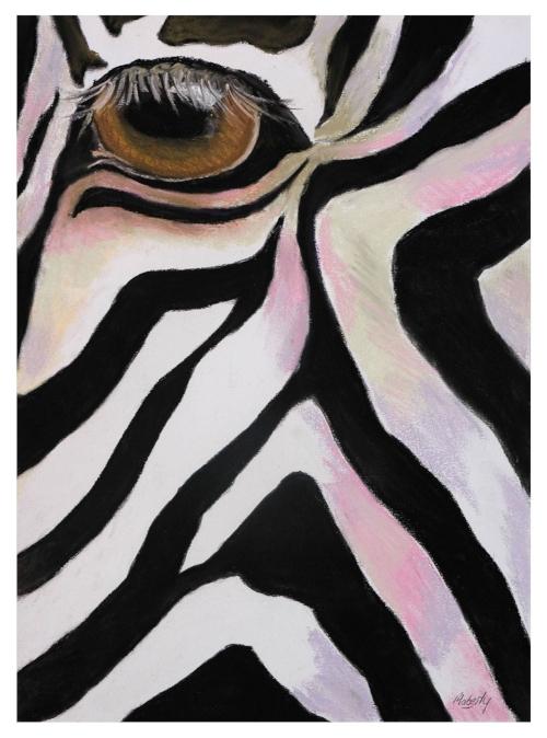 Zebra eye.b.12.16.resize..jpg