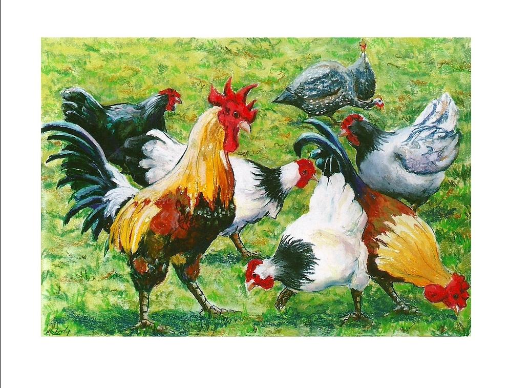 Le Sueurs fowls.7.17..c.mailchimp.jpg