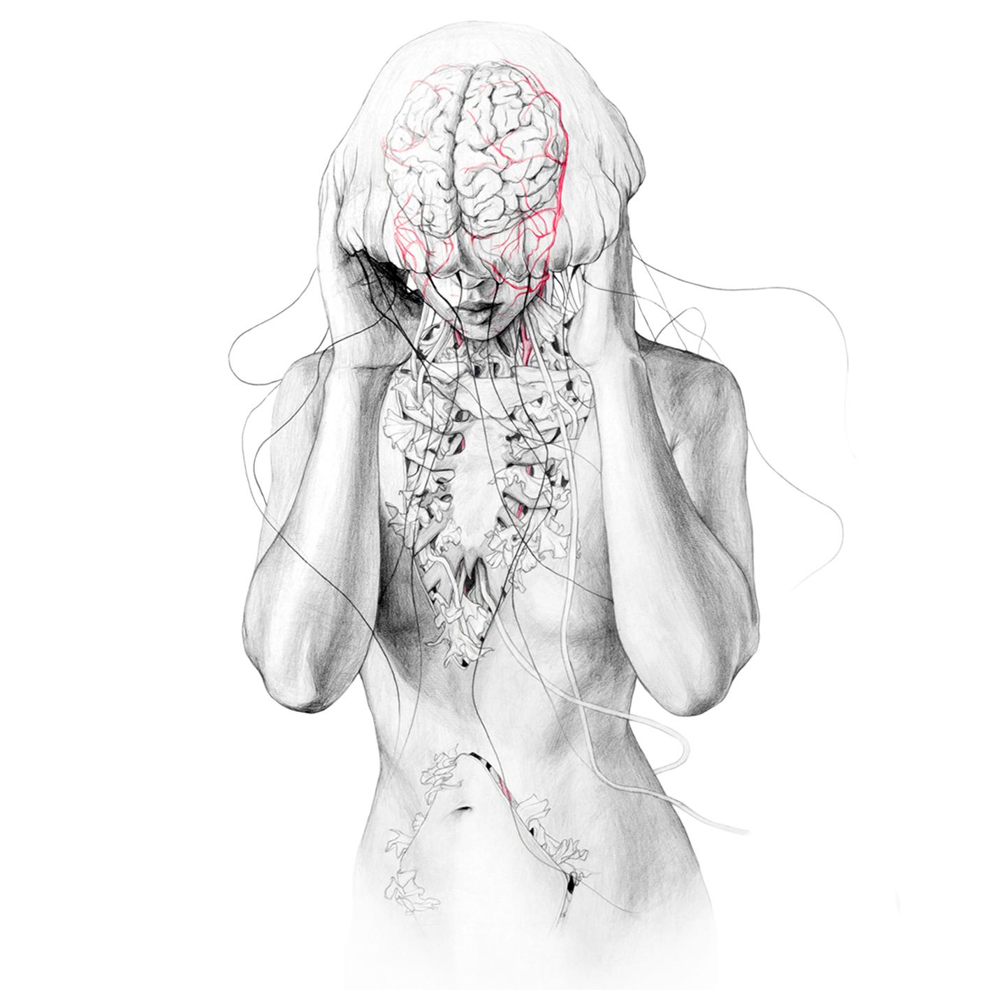 jellyfishII_web.jpg