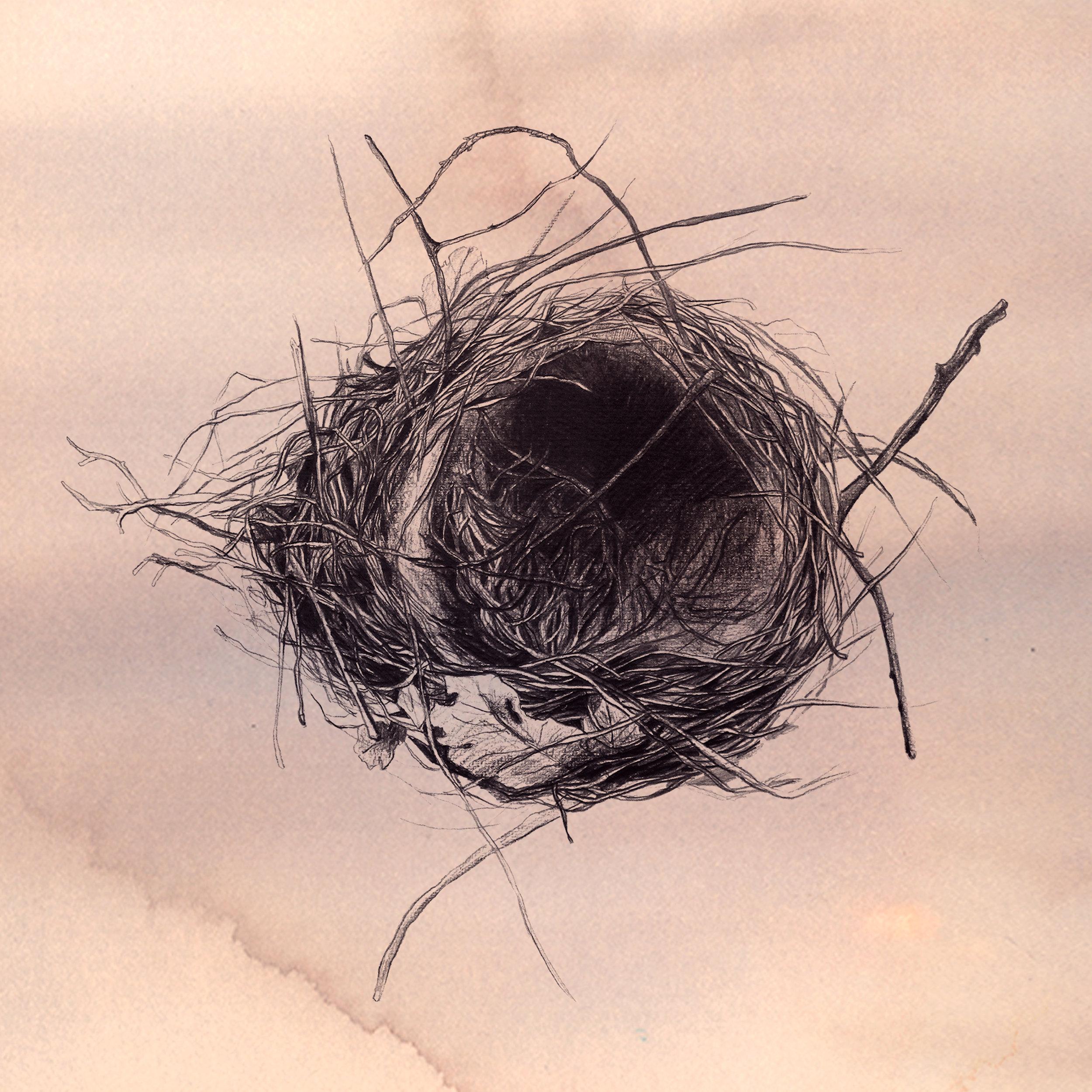 the nest_elisaancori1.jpg