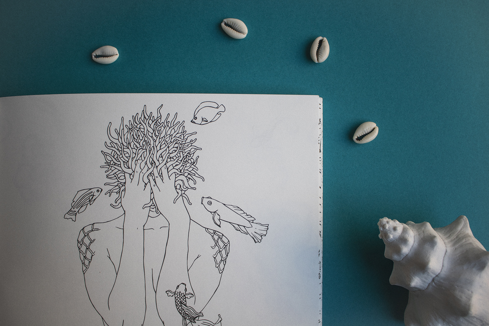 metamorfish_libro_elisaancori4.jpg