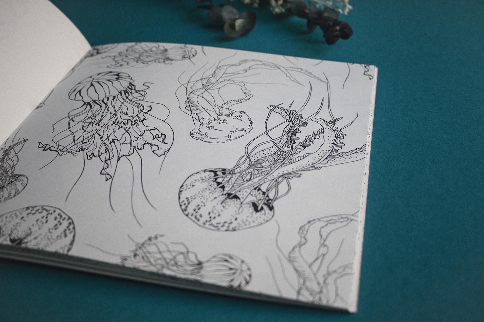 metamorfish_libro_elisaancori8.jpg