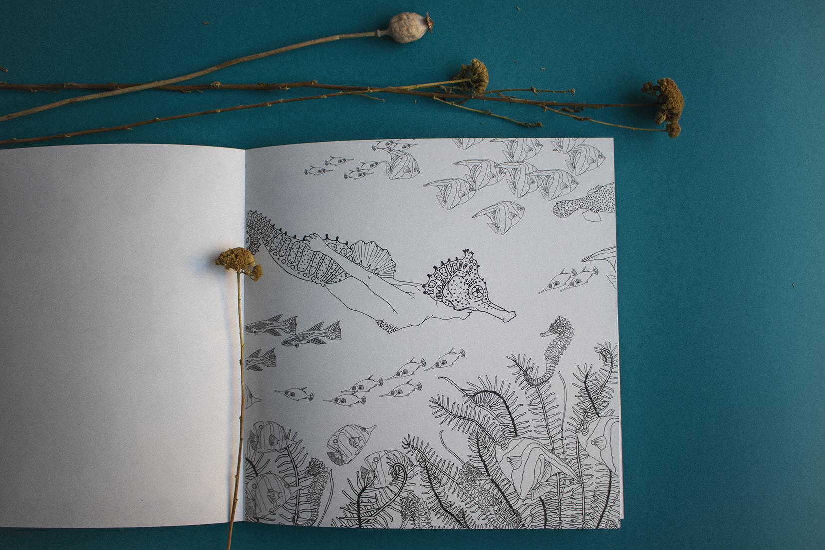 metamorfish_libro_elisaancori11.jpg