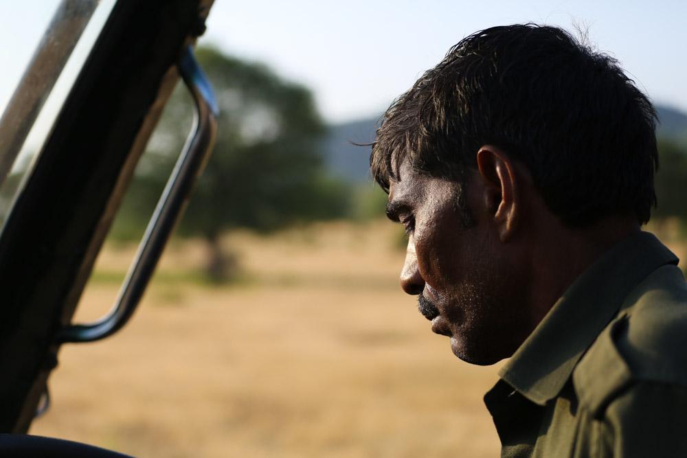 Ranthambore-4.jpg