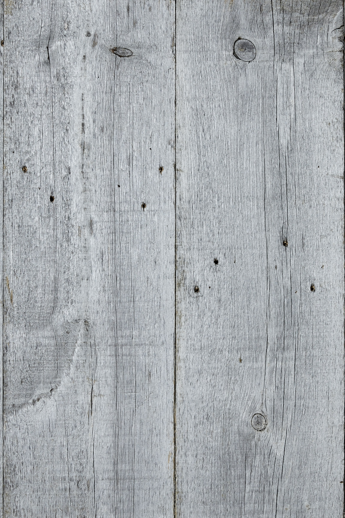 SILVER PINES PANELING