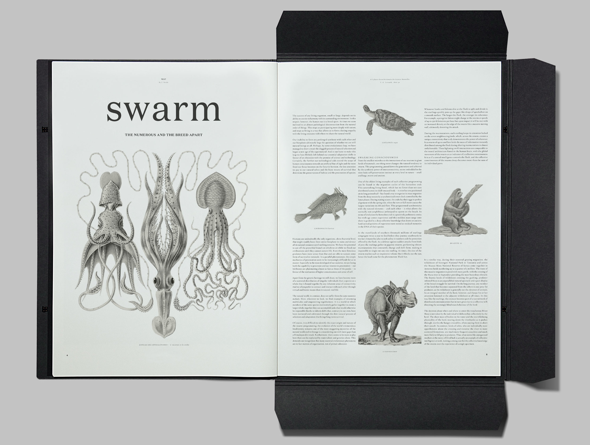 Plethora_Magazine_Issue_6_SWARM_01-kopier.jpg