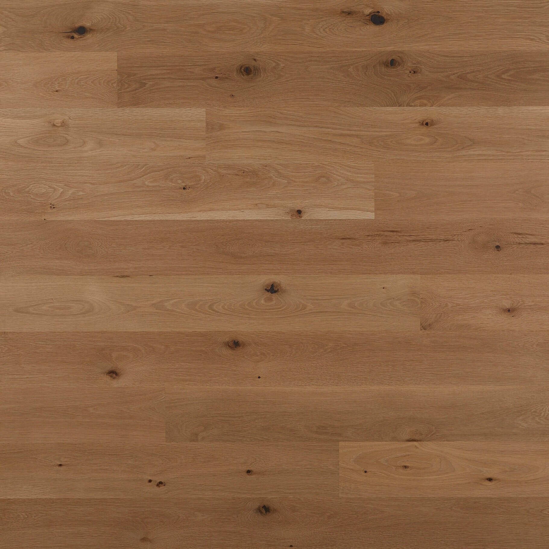 WHITE OAK, FLAT SAWN, LIGHT CHARACTER