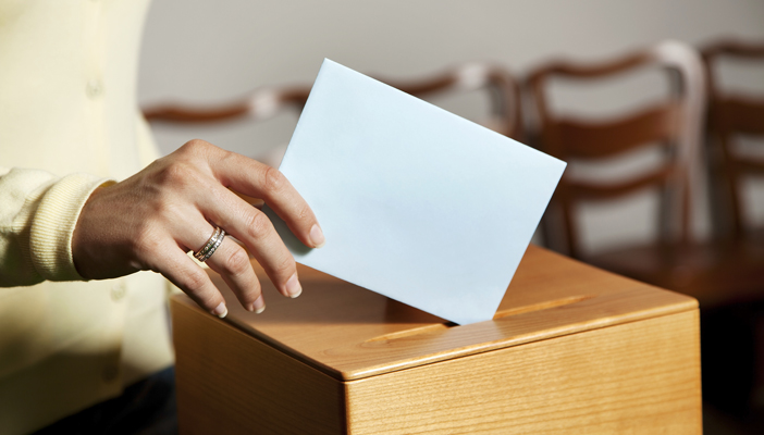 voting picture_2 (1).jpg