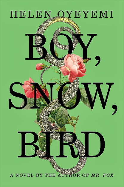 Boy-Snow-Bird.jpg