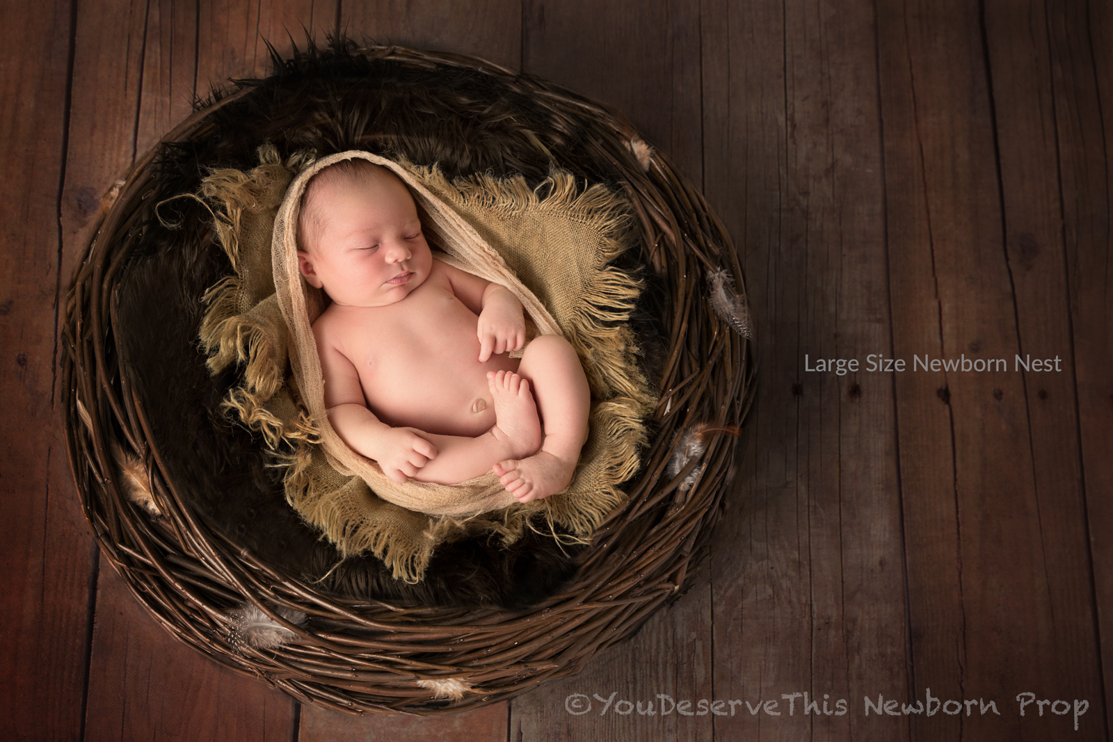 Newborn photographers, Mum's and Dad's all love photographing their newborn babies with our English Willow Nest Props -  Learn More