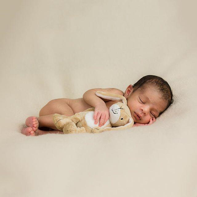 Cuddles with your little Nut Brown Hare, newborn scrumptious...