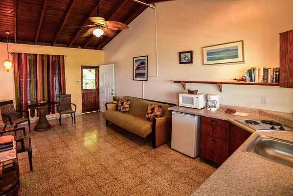 Pina living space with kitchen