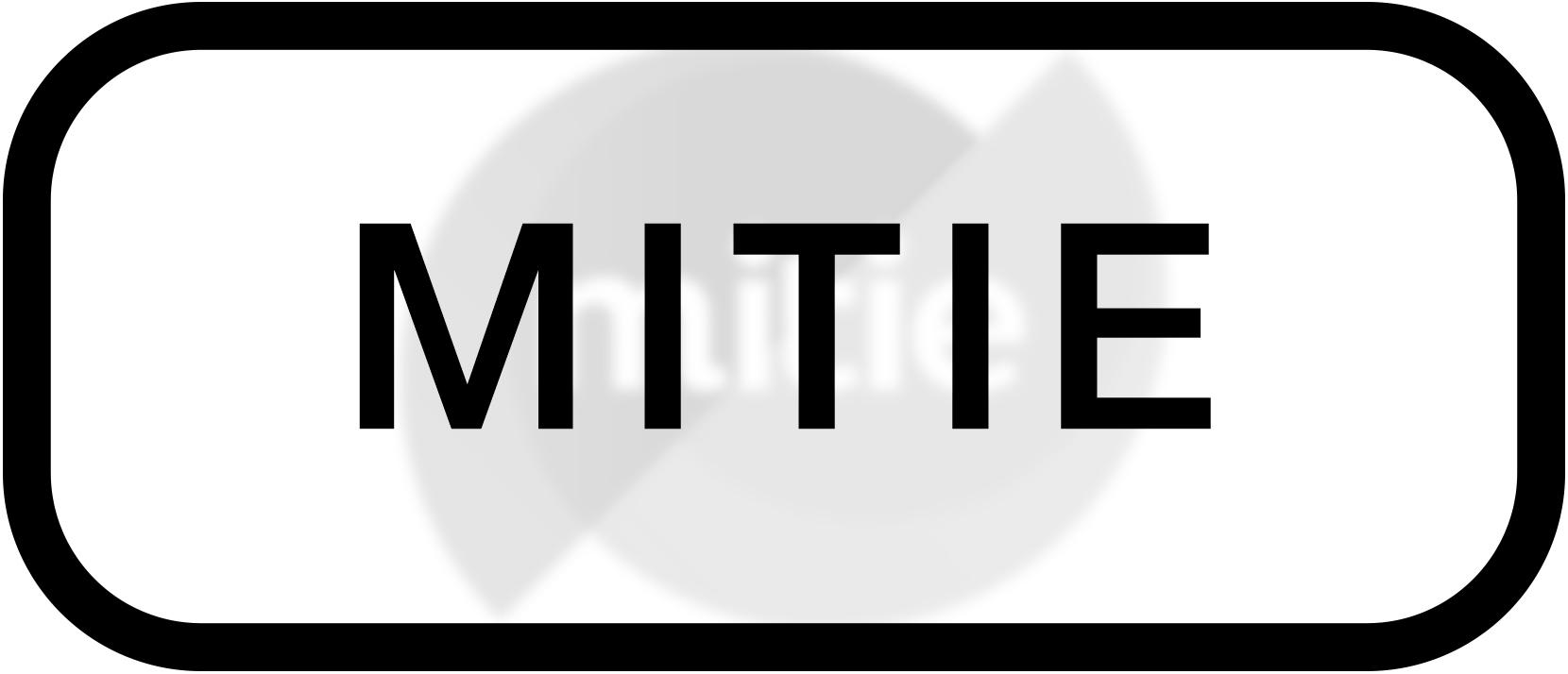Client List Mitie.jpg