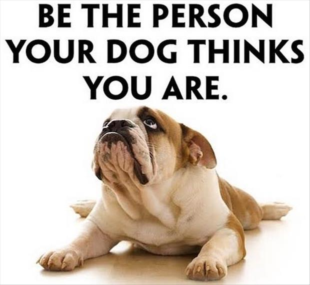 People Academy - Be the person your dog thinks you are