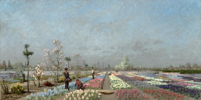 Demont - Hyacinth Fields.jpg