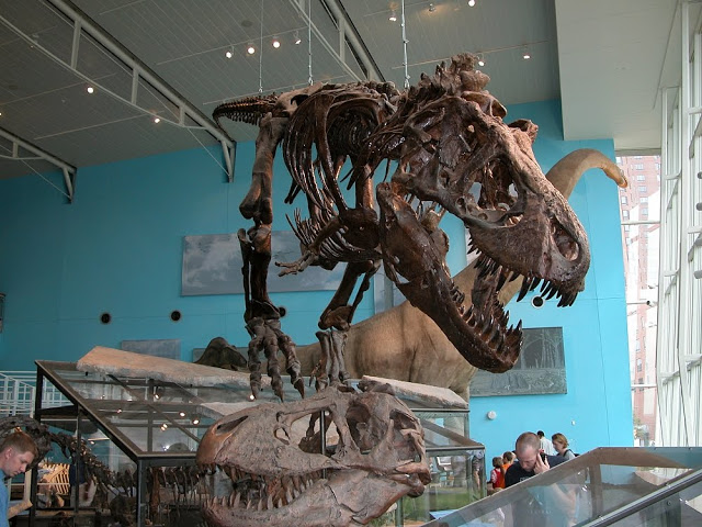 maryland science center.jpg