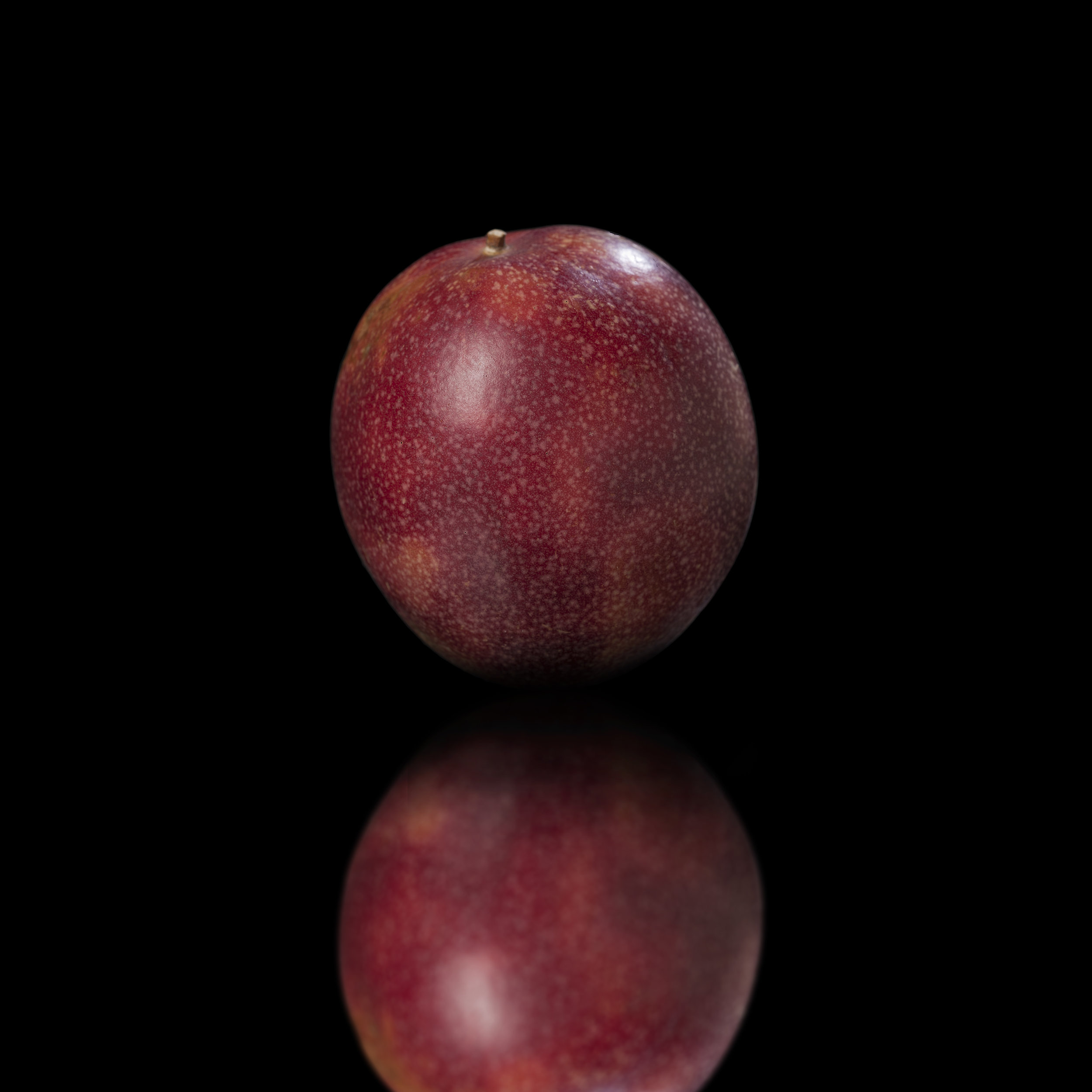 Fruit de la Passion 01.jpg