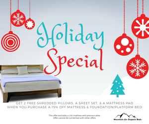 Holiday Special (7).png
