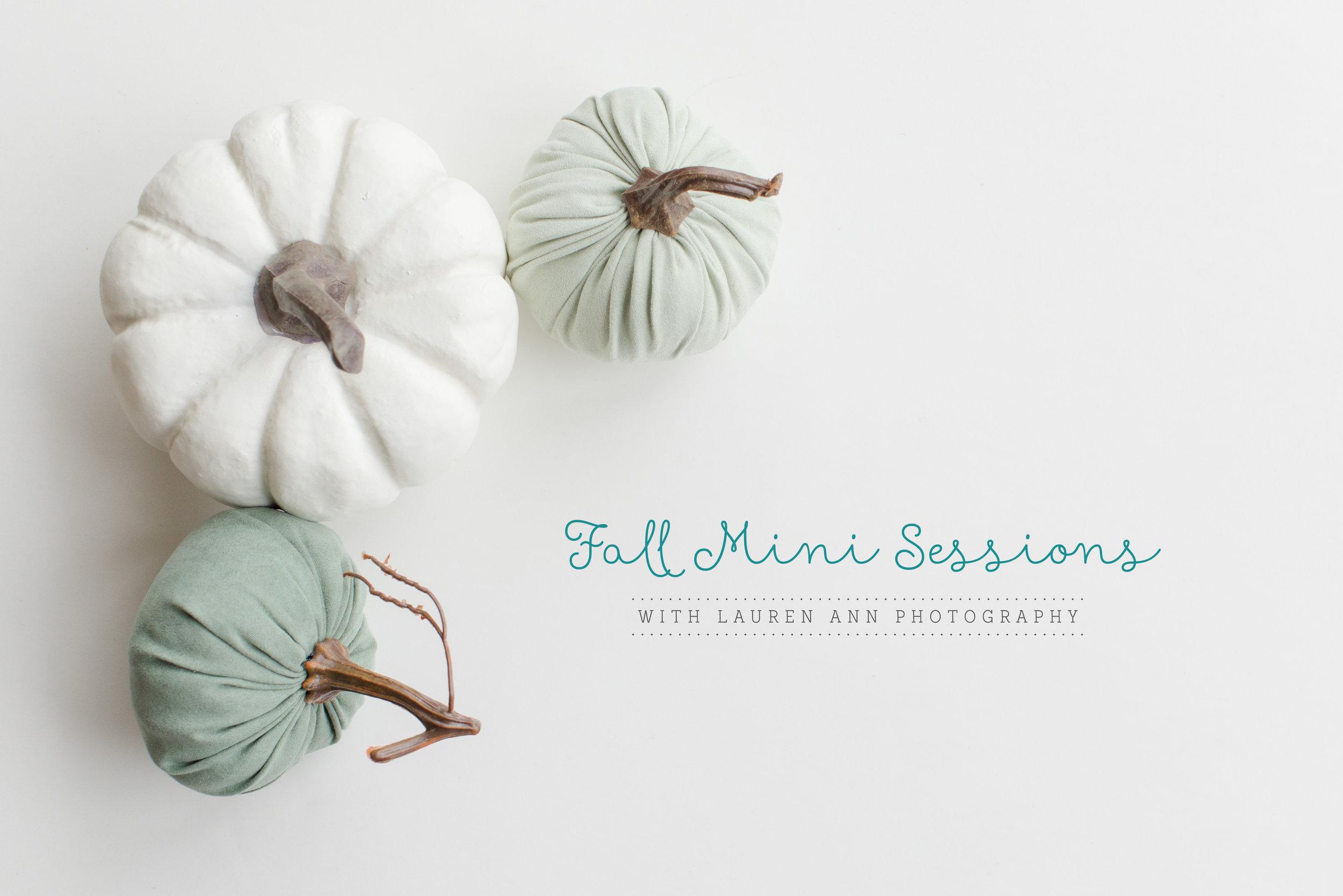 Fall Mini Sessions Charlotte NC