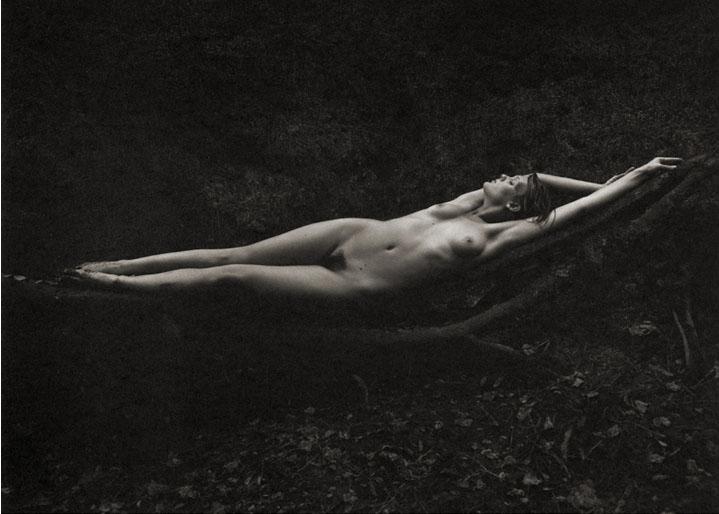 Kathryn #5 - Nature's Hammock , 1996  Platinum/Palladium photograph.  11 1/16 x 14 7/8 inches