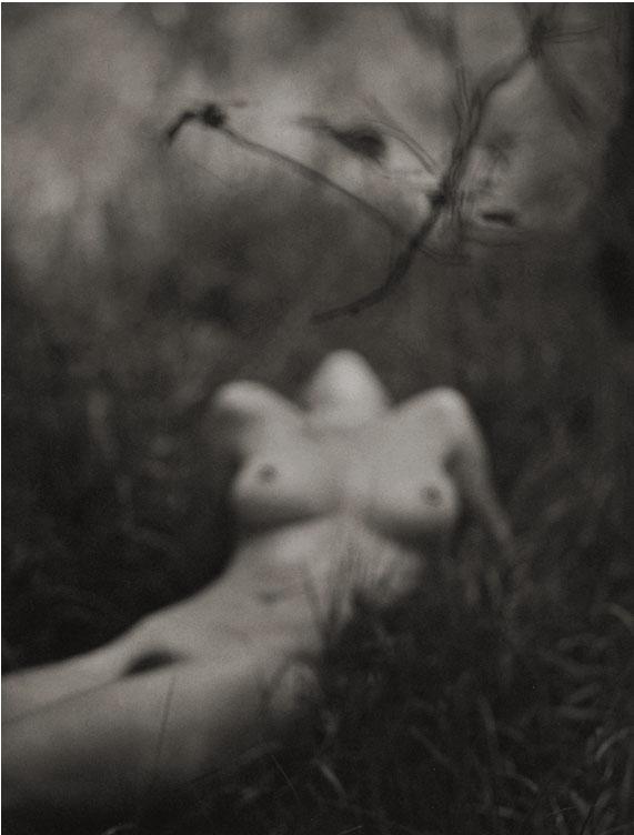 Susan #4 - Splendid Grass, 1997  Platinum/Palladium photograph.  14 7/8 x 11 11/16 inches