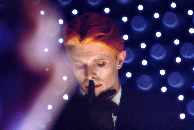 19 Bowie in Blue.jpg