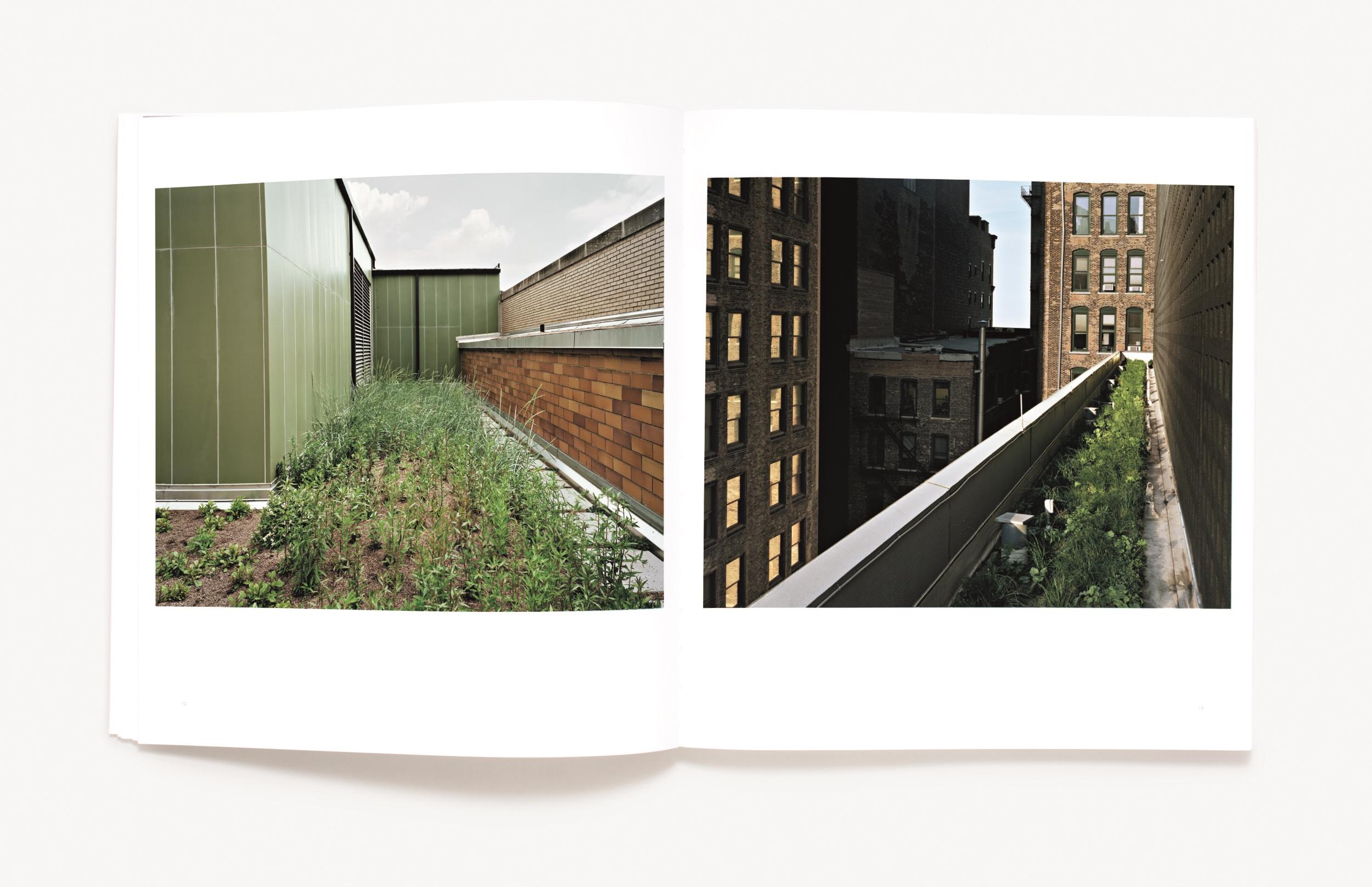 Brad Temkin.ROOFTOP spread 2 (Radius Books).jpg
