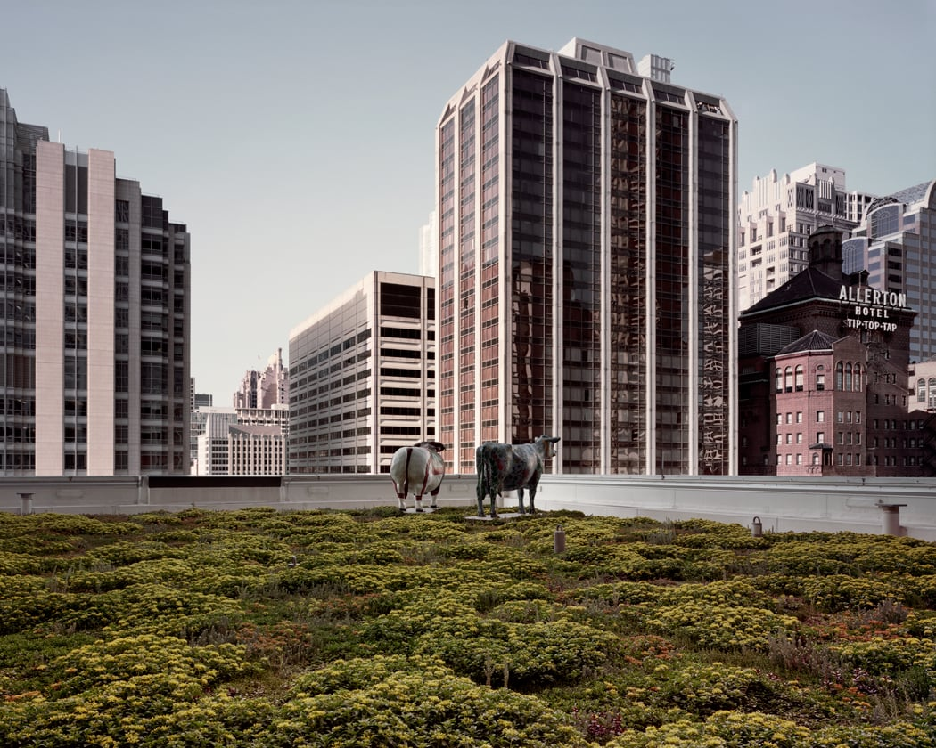 Lurie Children's Memorial Hospital (looking Southeast) - Chicago, IL, May 2012  Archival pigment photograph.   32 x 40 inches