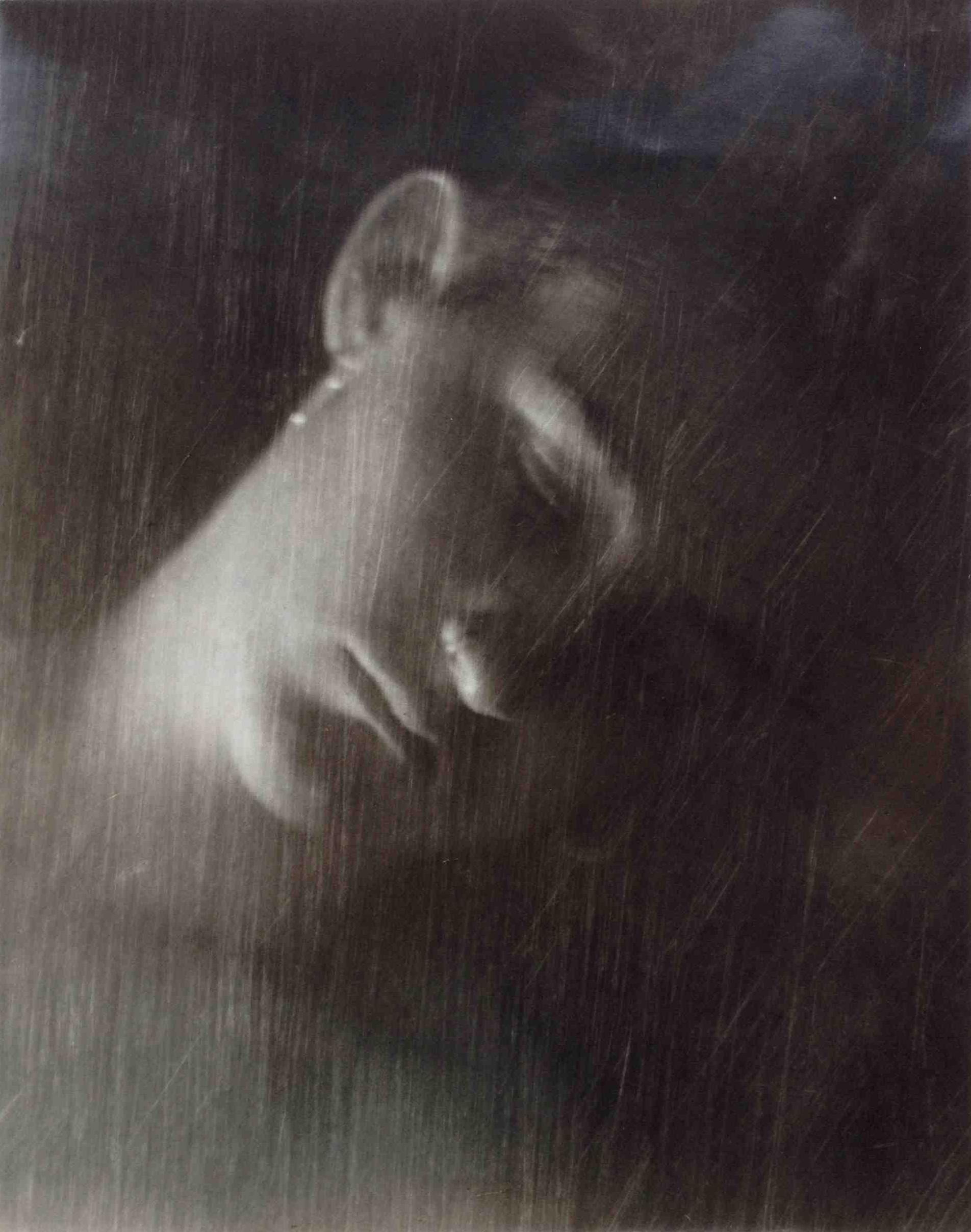 """Portrait of Shiloh , 1994  1/1 Unique Print  11x14"""" $960"""